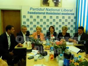 PNL- Conferinta Mediu 006